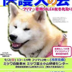 GO!保護犬GO☆保護犬の会&大フリマ@静岡小山 冷房完備