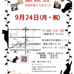 ★東銀座徒歩2分★猫の未来とびら譲渡会★ サムネイル1