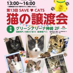 SAVE♥CATS 第13回 猫の譲渡会