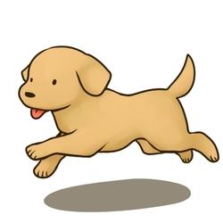 犬の譲渡会情報