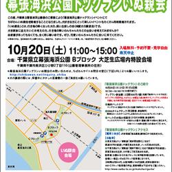 10月20日【幕張海浜公園ドッグランいぬ親会】開催のご案内