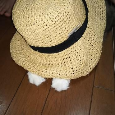 帽子がヤミツキ❗️