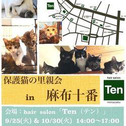 9月25日(火) 地域猫から社会猫へ FIPフリー 麻布十番里親会(ボランティア募集中)