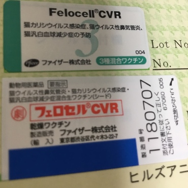 2回目  接種月日 2012年9月14日