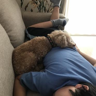 お兄ちゃんと昼寝