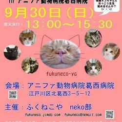ふくねこや。。neko部  第35回 保護猫さとおや会
