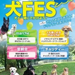 犬FES -犬と一緒に出掛けよう-