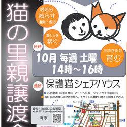 「保護猫シェアハウス・育む」 六角形の家