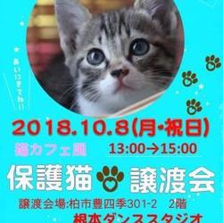 10/8【祝】大盛況 譲渡会