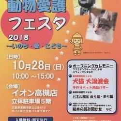 動物愛護フェスタ2018 犬猫大譲渡会