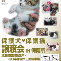 保護犬☆保護猫譲渡会 IN 川口保健所