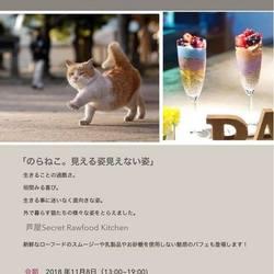 中川こうじ写真展+cafe