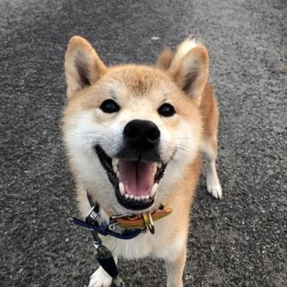 とびっきりの笑顔が可愛いトド松くん
