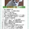 信頼度№1.猫がオーナーの「お見合い会」TV放送予定