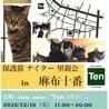 12月18日(火) 地域猫から社会猫へ FIPフリー 麻布十番ナイター里親会(ボランティア募集中)