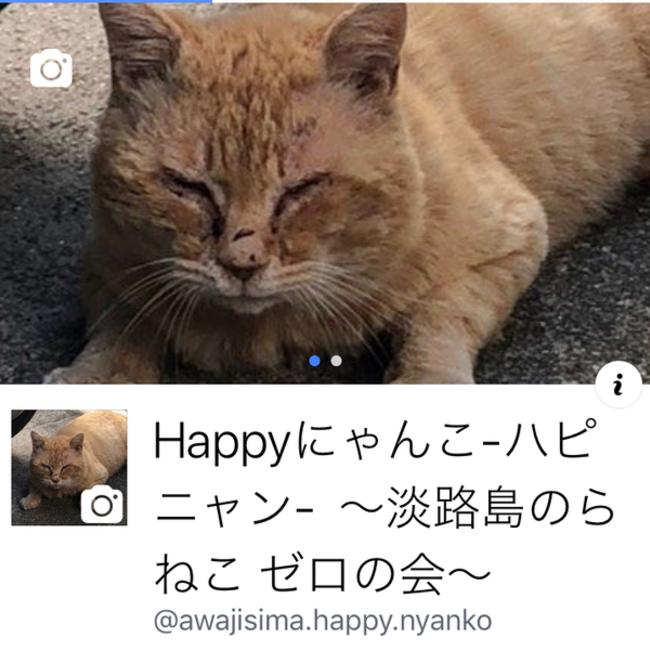 Happyにゃんこ-ハピニャン- ~淡路島のらねこ ゼロの会~のカバー写真