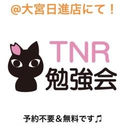 【川越】TNR勉強会 in ねこかつ@川越店