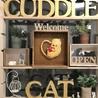 Cuddle Cat  カドル キャット