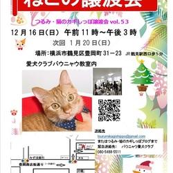 横浜 つるみ猫のカギしっぽ譲渡会vol.53