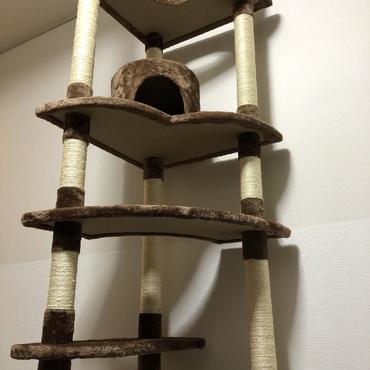 猫ちゃんを迎え入れるためにキャットタワー設置!!!