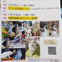 猫の譲渡会&映画上映会(無料)  三重県名張市