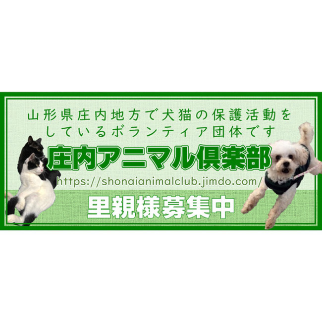 庄内アニマル倶楽部のカバー写真