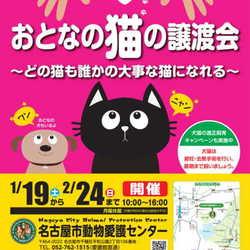 ◆ほぼ毎日♪譲渡会◆名古屋市動物愛護センター主催