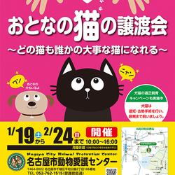 名古屋市動物愛護センター譲渡会