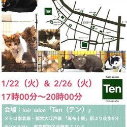 1月22日(火) 麻布十番ナイター里親会