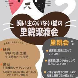 「保護猫シェアハウス・育む」  里親会