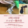 保護猫チャリティイベント@高槻イオン 2月22日はハッピーねこの日!