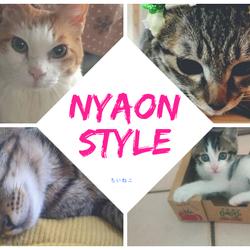 保護猫チャリティイベント@高槻イオン 2月22日はハッピーねこの日! サムネイル2