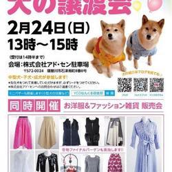 2月24日 YCDなんくる倶楽部 いのちのバトンわたす犬の譲渡会(第10回)