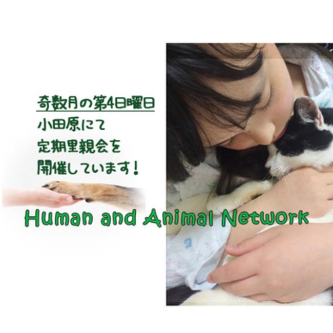 Human&Animal Networkのカバー写真