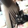 とても甘えん坊な黒猫(たんたん) サムネイル4
