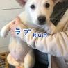 ラブ kun ❤️ 3ヶ月