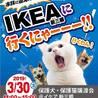 保護犬・保護猫譲渡会@IKEA新三郷