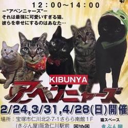 宝塚市・保護猫譲渡会