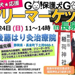 GO!の保護犬応援・室内フリマin長泉町