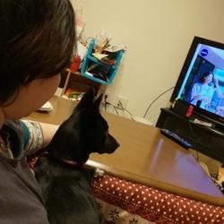 一緒にテレビを見ていたら