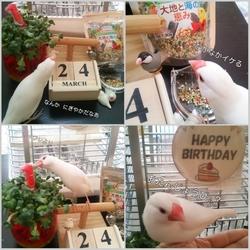 「happy birthday」サムネイル2