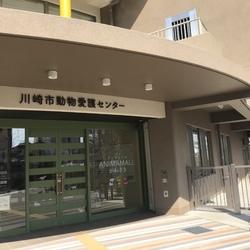 川崎市アニマモール譲渡会