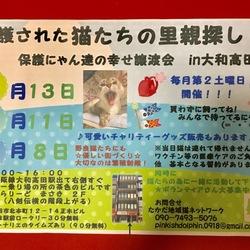 たかだ地域猫ネットワークin大和高田市