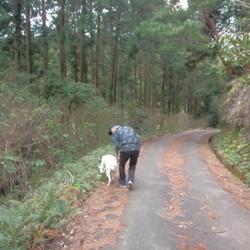 森で迷子になりました~!(×_×)