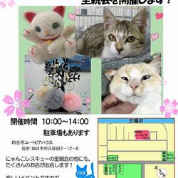 イベント付き猫の譲渡会
