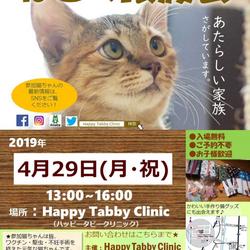 第6回【猫の譲渡会】ハッピータビークリニック主催