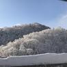 帰省先の北海道