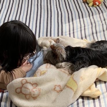寝てるヒロにちょっかい出そうとしてる娘…。
