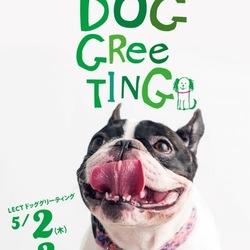 LECT DOG GLEETING