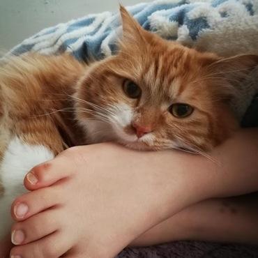 娘の足が・・・枕です。